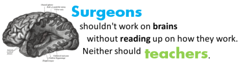 Surgeons shouldn't work on brains without reading up on how they work. Neither should teachers.