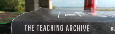 A photo of the book The Teaching Archive on a roughed up hive on a picnic table, with a can, a pillar of a picnic shelter, trees, a lake, and sky in the background.
